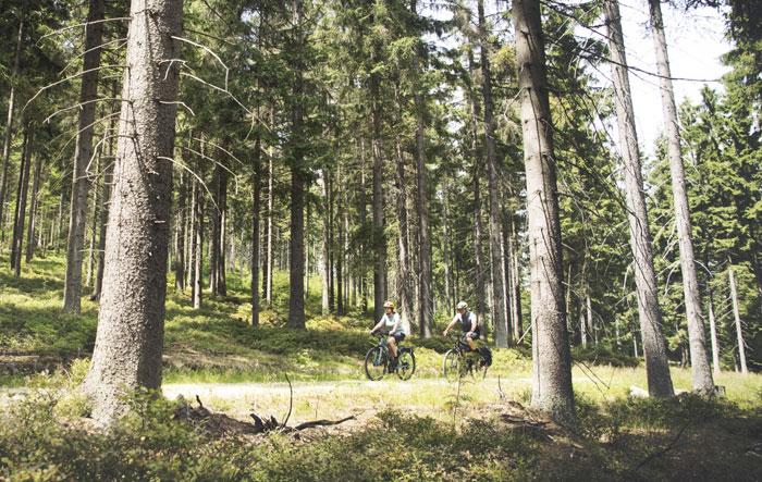 eBike Senioren fahrrad fahren ältere