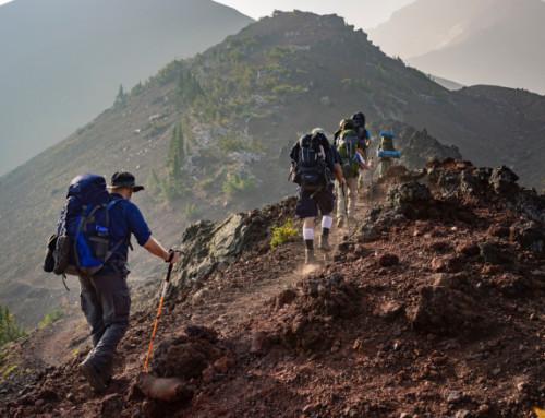 Bastoncini Trekking: Guida all'acquisto